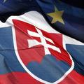 Slovensk� dom�cnosti s� v pomere k HDP zadl�en� najmenej v euroz�ne