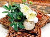 Umelé kvety a dekorácie